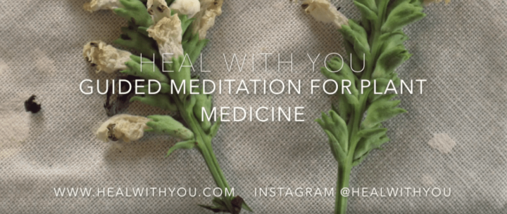 Free Guided Meditation for Plant Medicine in Collaboration with Fe Earth to Body Hemp Oils